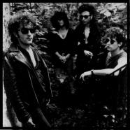 Shredded-In-1987